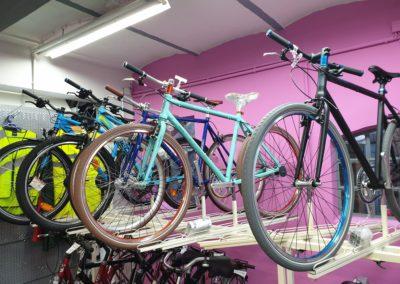 Große Fahrrad Auswahl bei Fahrrad Buck