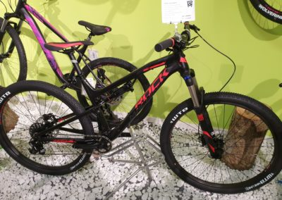 Mountain Bikes von Top Marken